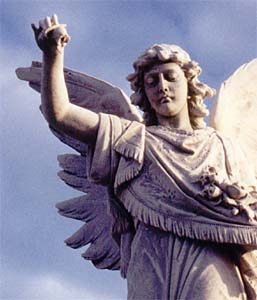 Angel at Waverley Cemetery Sydney Australia